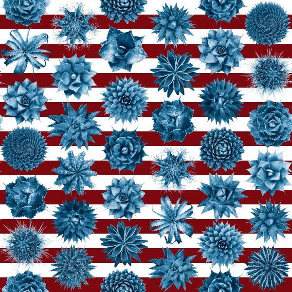 Spiky Red white blue