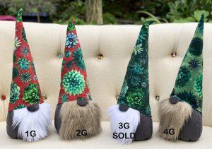succulent gnome