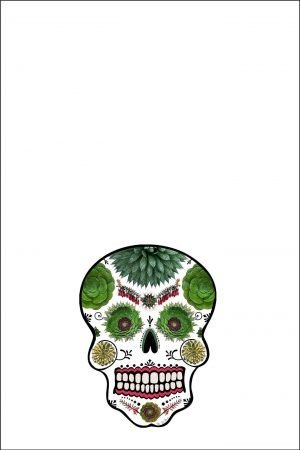 day of the dead skull towel