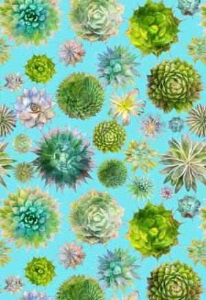 succulent cactus towel